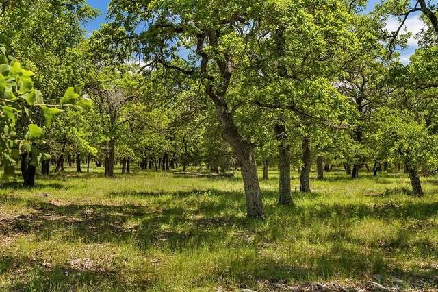 00 -- Mystic Oaks Trail, Fredericksburg, TX 78624 (MLS #80504) :: Reata Ranch Realty