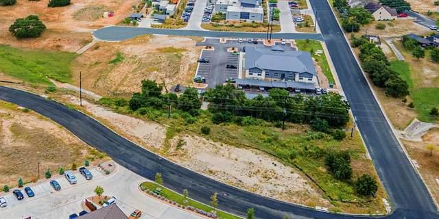 602 W Windcrest Dr, Fredericksburg, TX 78624 (MLS #80757) :: Reata Ranch Realty