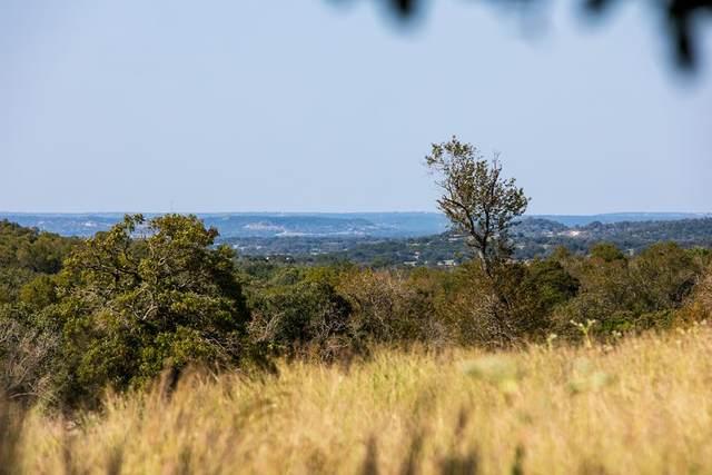282 -- Inspiration Loop, Fredericksburg, TX 78624 (MLS #80904) :: Reata Ranch Realty