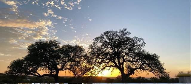 00 -- Axis Circle, Stonewall, TX 78671 (MLS #81010) :: Reata Ranch Realty