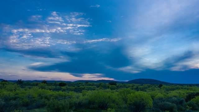 00 -- Hwy 16 N., Llano, TX 78643 (MLS #81159) :: Reata Ranch Realty