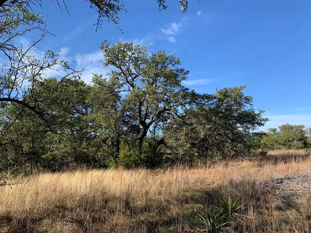 TBD -- Crystal Mountain Drive, Round Mountain, TX 78663 (MLS #81199) :: Reata Ranch Realty