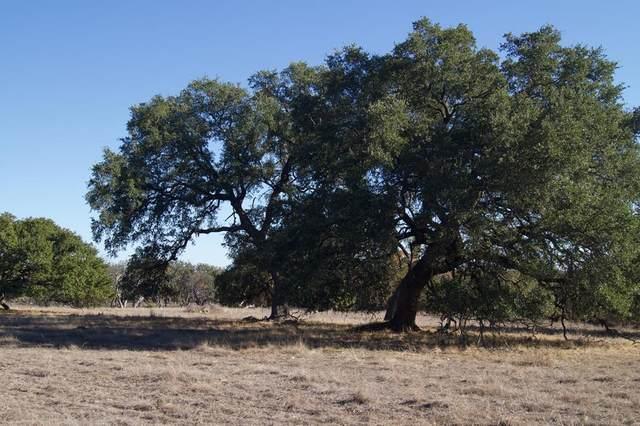 1468 -- Aviation Loop, Harper, TX 78631 (MLS #81237) :: Reata Ranch Realty