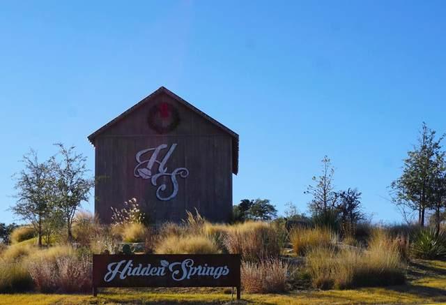 281 -- Inspiration Loop, Fredericksburg, TX 78624 (MLS #81240) :: Reata Ranch Realty