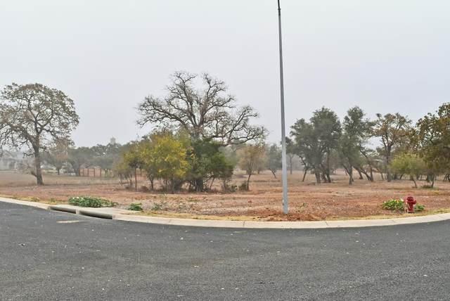 2204 -- Stone Meadow, Fredericksburg, TX 78624 (MLS #81269) :: Reata Ranch Realty