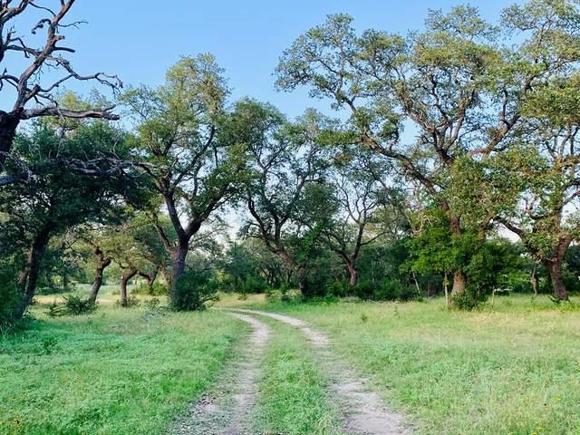 5500 E Us Hwy 281, Blanco, TX 78606 (MLS #81349) :: Reata Ranch Realty