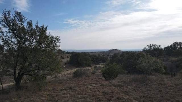 65 -- Cypress View Drive, Johnson City, TX 78636 (MLS #81353) :: Reata Ranch Realty