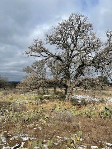 13 -- Comanche Ridge, Round Mountain, TX 78663 (MLS #81359) :: Reata Ranch Realty