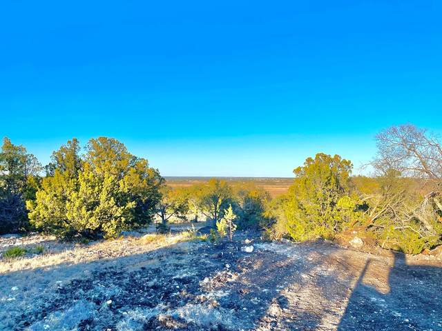 115 -- Anderson Lane, Hext, TX 76856 (MLS #81391) :: Reata Ranch Realty