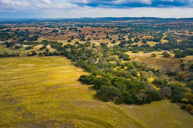 1767 N Walnut Springs Rd, Johnson City, TX 78636 (MLS #81413) :: Reata Ranch Realty
