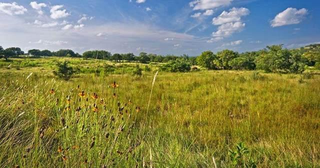 904 N Walnut Springs Rd, Johnson City, TX 78636 (MLS #81414) :: Reata Ranch Realty