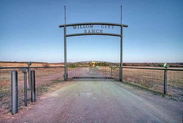 1160 -- W C Ranch Rd, Willow City, TX 78675 (MLS #81518) :: Reata Ranch Realty