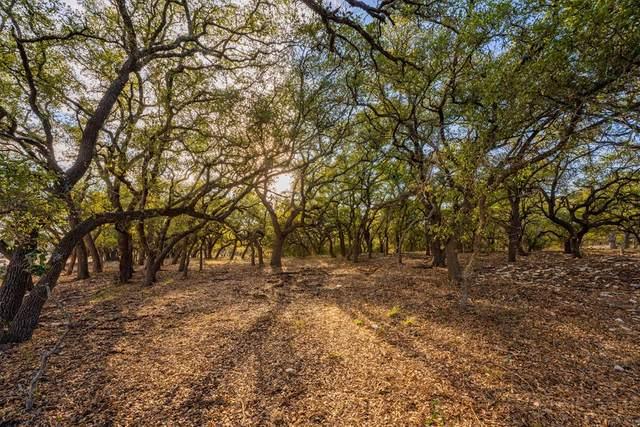 2 -- Duderstadt Rd, Harper, TX 78631 (MLS #81529) :: Reata Ranch Realty