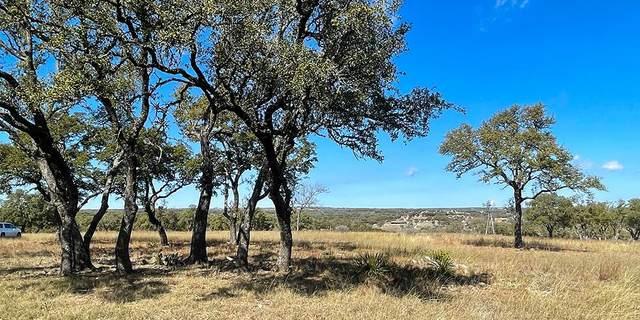 Fredericksburg, TX 78624 :: The Glover Homes & Land Group