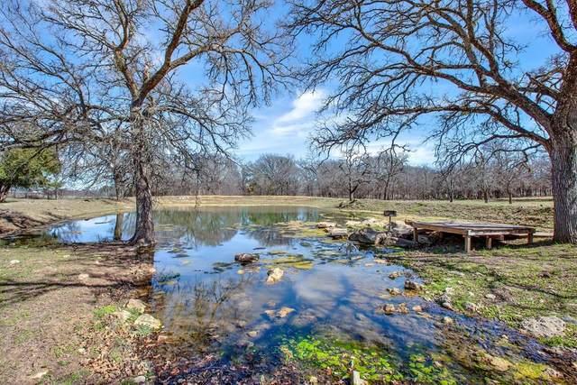 347 S Woodland Dr, Fredericksburg, TX 78624 (MLS #81767) :: Reata Ranch Realty