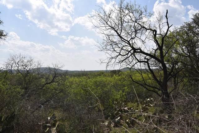 00 S State Hwy 16, Llano, TX 78643 (MLS #81860) :: Reata Ranch Realty