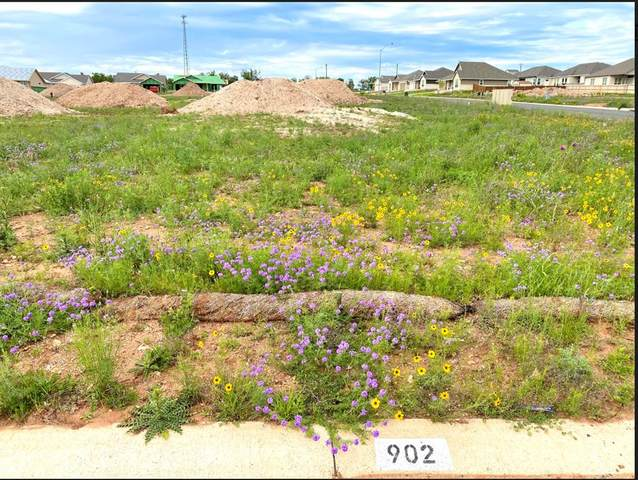 902 -- Smokey Oak Dr, Fredericksburg, TX 78624 (MLS #81895) :: Reata Ranch Realty