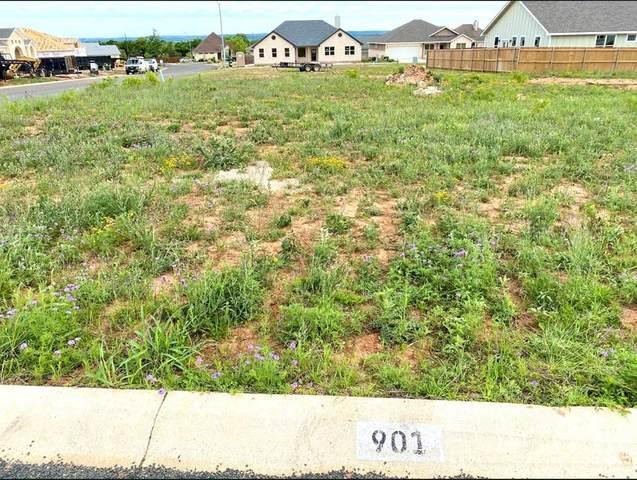 901 -- Smokey Oak Dr, Fredericksburg, TX 78624 (MLS #81899) :: Reata Ranch Realty