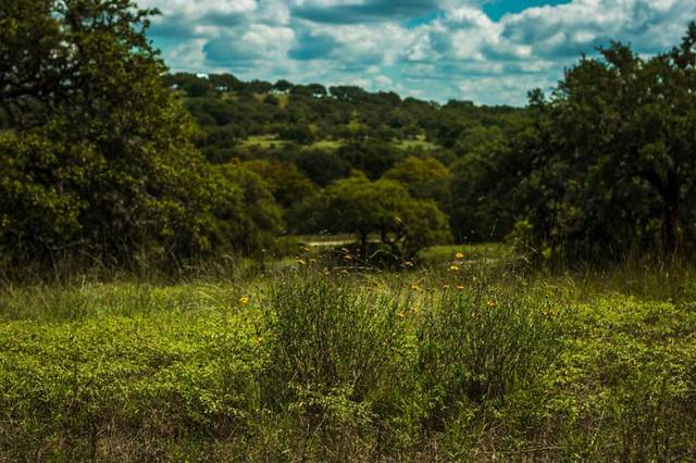 1495 -- Walnut Springs Rd, Johnson City, TX 78636 (MLS #81958) :: The Glover Homes & Land Group