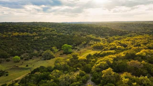 346 N Crabapple Road, Kendalia, TX 78027 (MLS #82261) :: Reata Ranch Realty