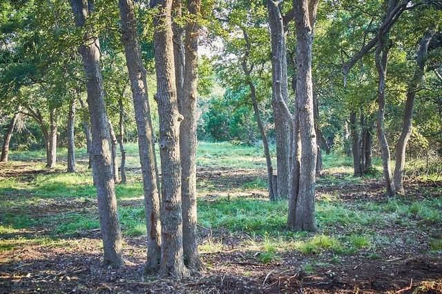 00 -- Herber-Schaefer Rd, Willow City, TX 78624 (MLS #82500) :: Reata Ranch Realty