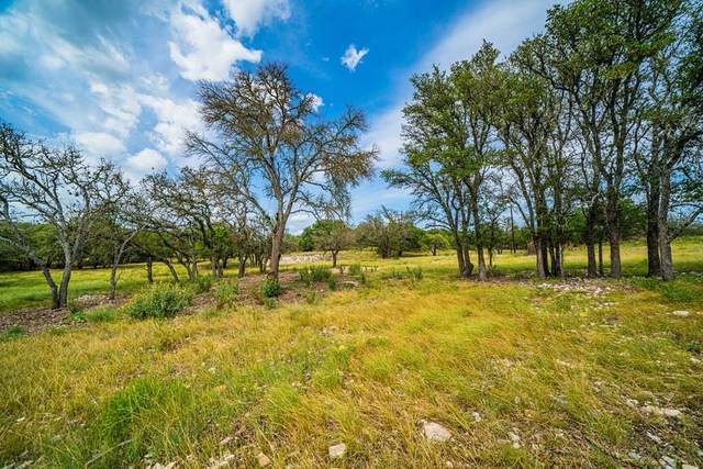 230 -- Blue Oak, Harper, TX 78631 (MLS #82608) :: The Glover Homes & Land Group