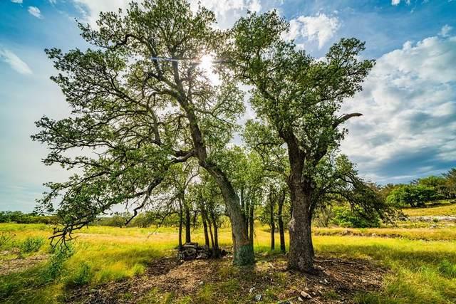 000 -- Blue Oak, Harper, TX 78631 (MLS #82610) :: The Glover Homes & Land Group