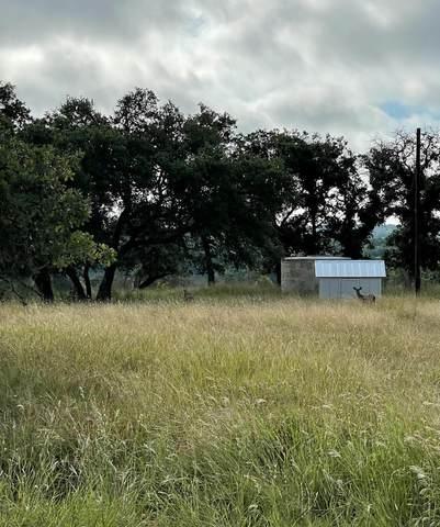 Lot 1 -- Inspiration Loop, Fredericksburg, TX 78624 (MLS #82771) :: The Glover Homes & Land Group