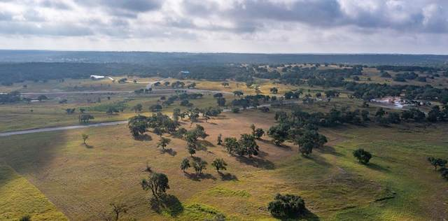 163 -- Agrihood Dr, Fredericksburg, TX 78624 (MLS #82775) :: The Glover Homes & Land Group