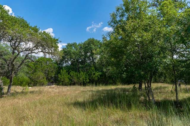 1259 -- Forest View Dr, Blanco, TX 78606 (MLS #82781) :: Reata Ranch Realty
