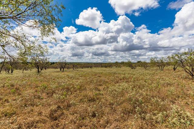 750 -- Ranch Rd 1323, Willow City, TX 78624 (MLS #82843) :: Neal & Neal Team