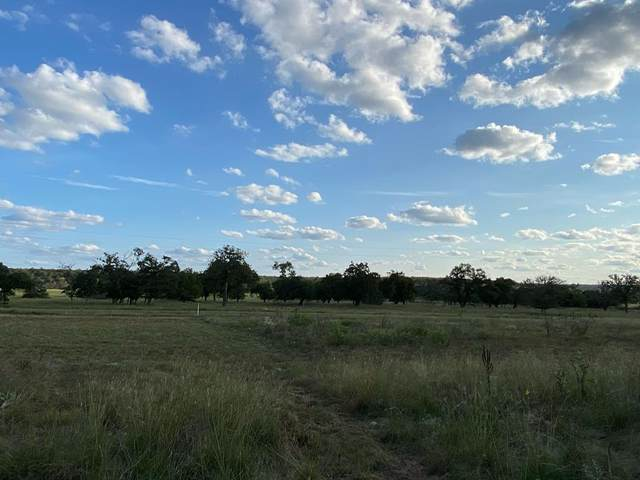 19000 W Fm 2093, Harper, TX 78631 (MLS #82847) :: Reata Ranch Realty