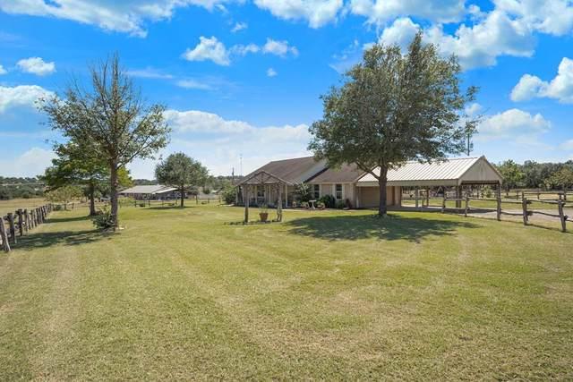 247 S Blanco Vista Dr, Blanco, TX 78606 (MLS #82888) :: Reata Ranch Realty
