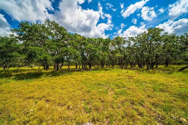 15 -- Black Jack Ranch Rd, Harper, TX 78631 (MLS #82980) :: The Glover Homes & Land Group