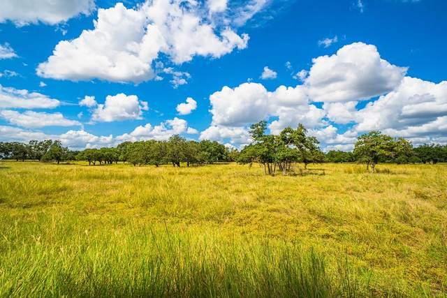 18 -- Black Jack Ranch Rd, Harper, TX 78631 (MLS #82982) :: The Glover Homes & Land Group
