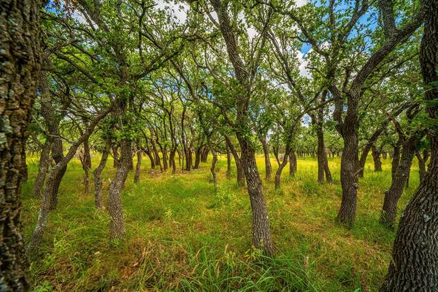 20 -- Black Jack Ranch Rd, Harper, TX 78631 (MLS #82983) :: The Glover Homes & Land Group