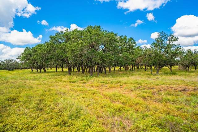 22 -- Black Jack Ranch Rd, Harper, TX 78631 (MLS #82985) :: The Glover Homes & Land Group