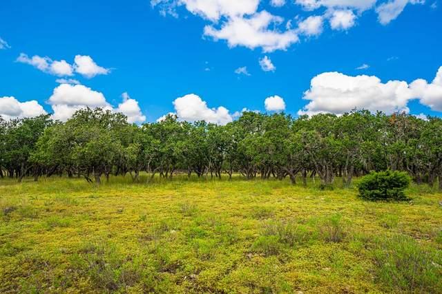 24 -- Black Jack Ranch Rd, Harper, TX 78631 (MLS #82987) :: The Glover Homes & Land Group