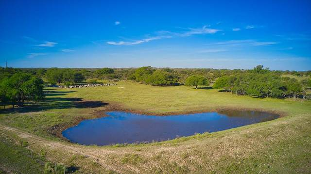 9050 W Us Hwy 190, Brady, TX 76825 (MLS #83002) :: The Glover Homes & Land Group