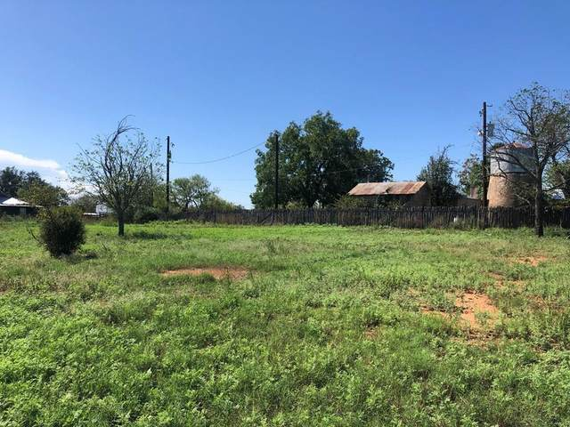716 -- Bluebonnet, Mason, TX 76856 (MLS #83008) :: The Glover Homes & Land Group