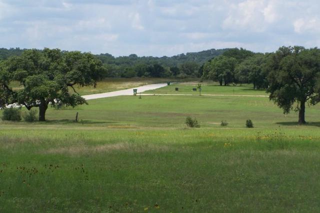 97 -- Summit Ridge Trail, Johnson City, TX 78636 (MLS #75465) :: Absolute Charm Real Estate