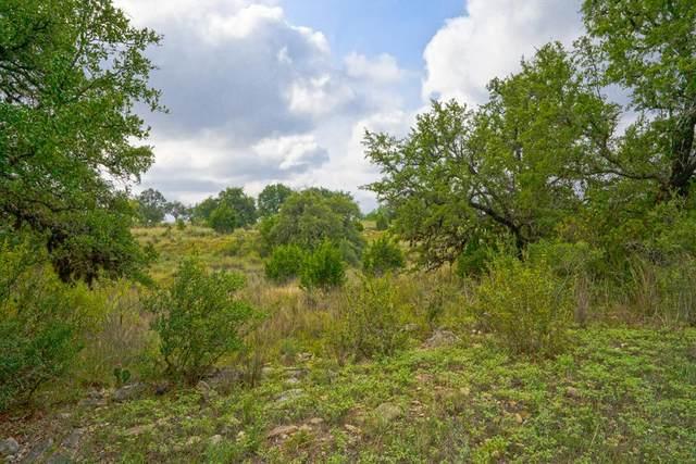 0 -- Summit Springs Lane, Johnson City, TX 78636 (MLS #76255) :: Reata Ranch Realty