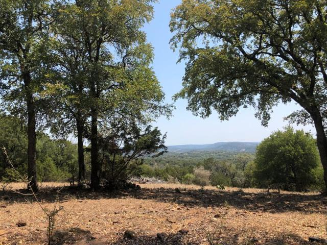 520 NW Isaacs Mountain Rd, Willow City, TX 78675 (MLS #76262) :: Absolute Charm Real Estate