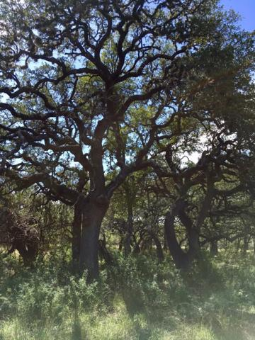 2058 W Crabapple Road, Blanco, TX 78606 (MLS #76635) :: Absolute Charm Real Estate