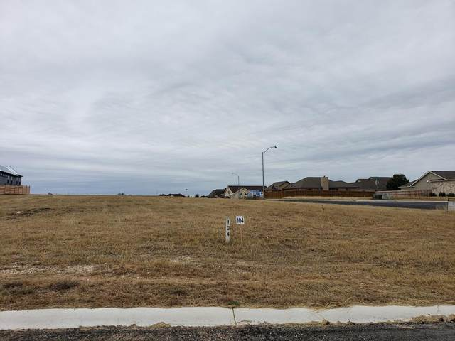 601 -- Taylor Ct, Fredericksburg, TX 78624 (MLS #79855) :: Reata Ranch Realty