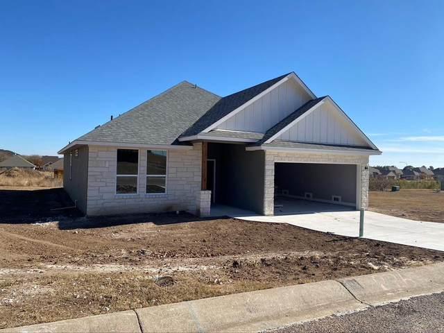 226 -- Riley Lane, Fredericksburg, TX 78624 (MLS #80301) :: Reata Ranch Realty