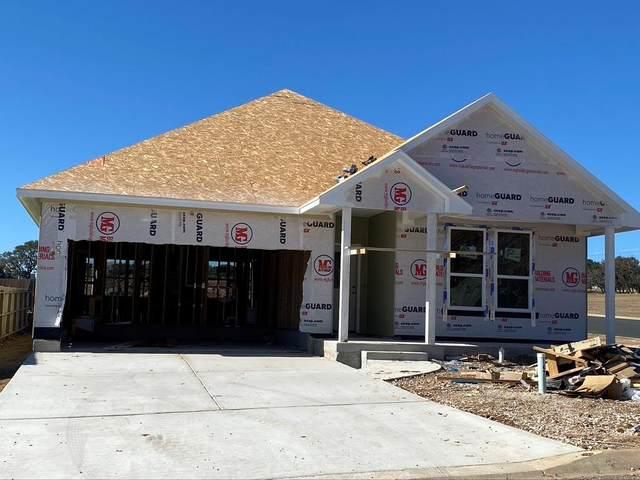 215 -- Winston Dr, Fredericksburg, TX 78624 (MLS #80410) :: Reata Ranch Realty