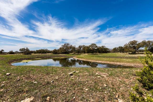 0 -- Other, Rocksprings, TX 78880 (MLS #81712) :: Reata Ranch Realty