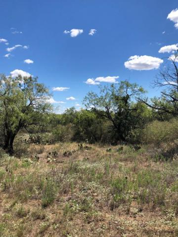 TBD -- Thurman Loop, Llano, TX 78643 (MLS #76434) :: Absolute Charm Real Estate