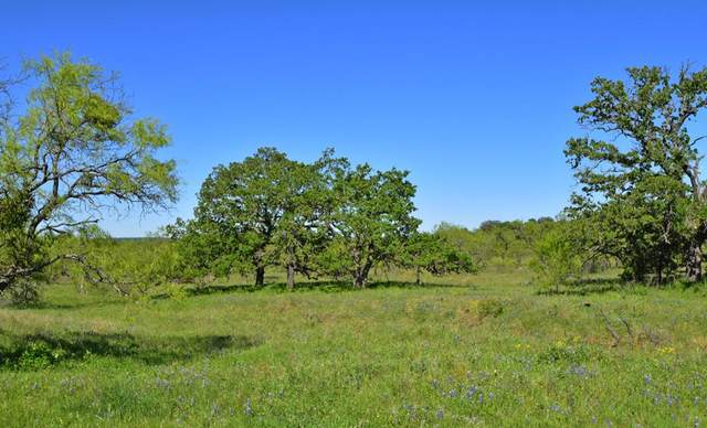 1 -- Slate Rock Rd, Willow City, TX 78675 (MLS #77214) :: Reata Ranch Realty
